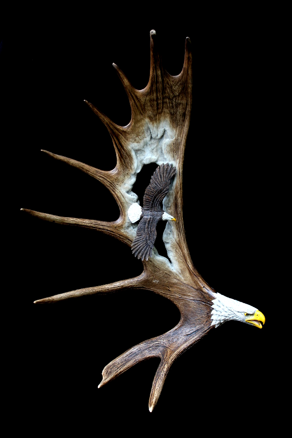 Flying Eagles Antler